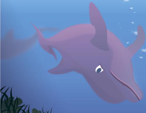 blog-delfin
